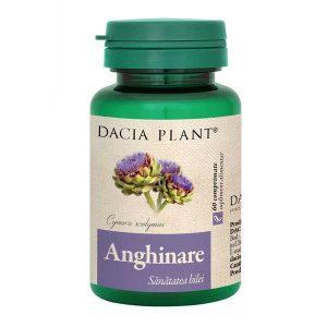 Anghinare Dacia Plant 60cpr
