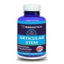Articular Stem Herbagetica 120cps