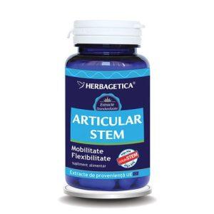 Articular Stem Herbagetica 60cps