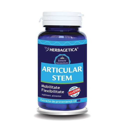 Articular Stem Herbagetica 60cps
