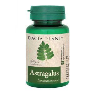 Astragalus Dacia Plant 60cpr