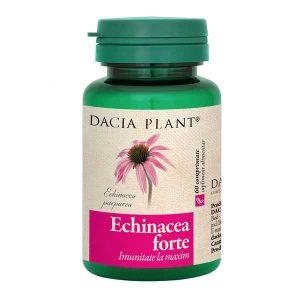 Echinacea Forte Dacia Plant 60cpr