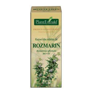 Extract Mladite Rozmarin Plantextrakt 50ml