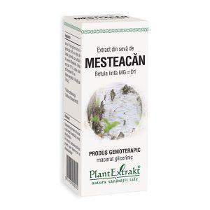 Extract din Seva de Mesteacan Plantextrakt 50ml