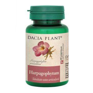 Harpagophytum Gheara Diavolului Dacia Plant 60cpr