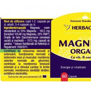 Magneziu Organic cu B-Complex Herbagetica 60cps