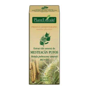 Extract Amenti de Mesteacan Pufos Plantextrakt 50ml