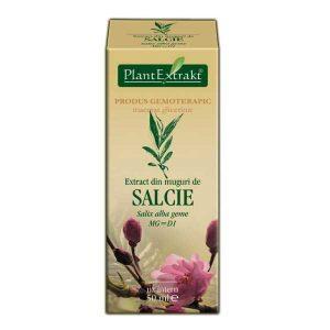 Extract din Muguri de Salcie Plantextrakt 50ml