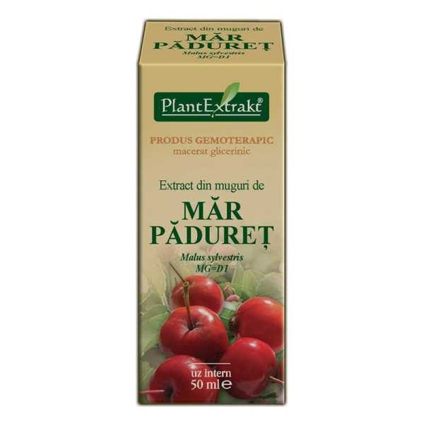 Extract din Muguri de Mar Paduret 50ml PLANTEXTRAKT