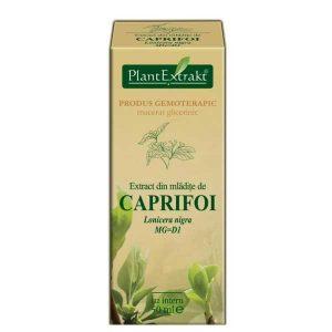 Extract Caprifoi Plantextrakt 50ml