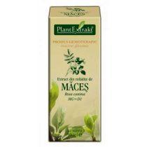 Extract din Mladite de Maces Plantextrakt 50ml