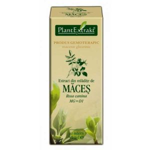 Extract din Mladite de Maces Plantextrakt 50ml