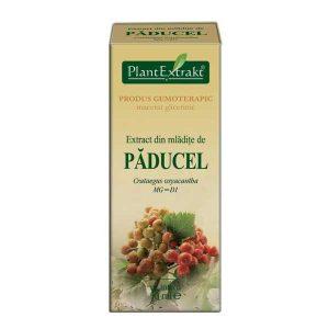Extract din Muguri de Paducel Plantextrakt 50ml