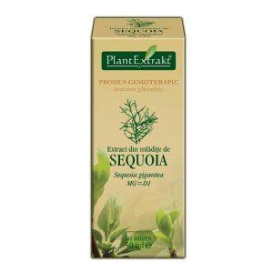 Extract din Mladite de Sequoia Plantextrakt 50ml