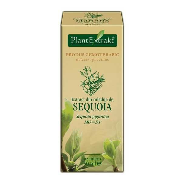 Extract Sequoia 50ml PLANTEXTRAKT