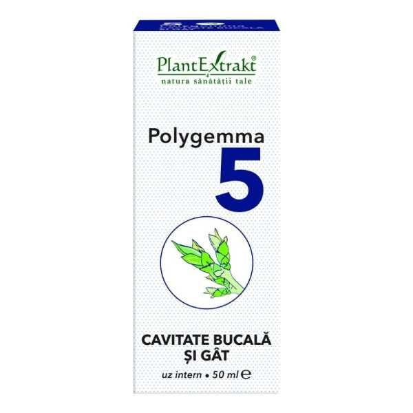 Polygemma nr. 5 (Cavitate Bucala/Gat) Plantextrakt 50ml