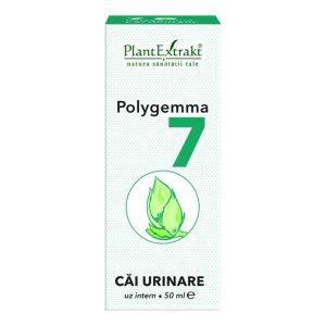 Polygemma 7 Plantextrakt Cai Urinare 50ml