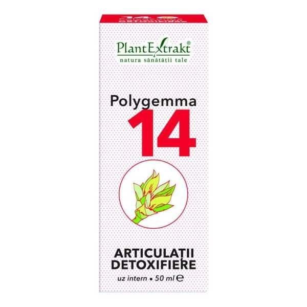 Polygemma nr. 14 50ml (Articulatii-Detoxifiere) PLANTEXTRAKT