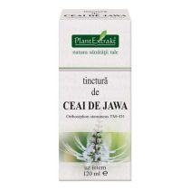 Tinctura de Ceai de Jawa Plantextrakt 120ml