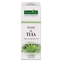 Tinctura de Tuia Plantextrakt 50ml