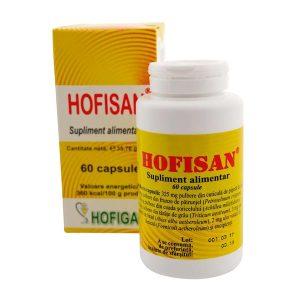 Hofisan 500mg Hofigal 60cps