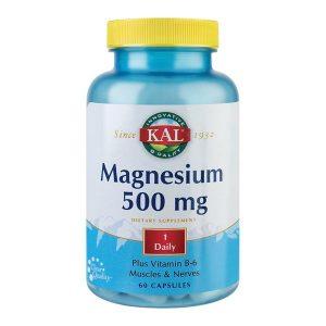 Magnesium 500Mg Secom KAL 60cps