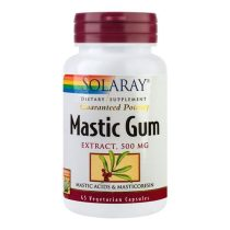 Mastic Gum Secom Solaray 45cps