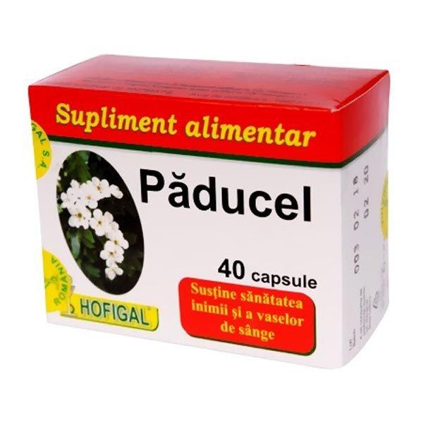 Paducel 40cps HOFIGAL