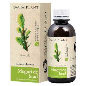 Sirop Muguri de Brad Dacia Plant 200ml