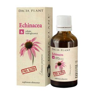 Tinctura de Echinacea Dacia Plant fara Alcool 50ml
