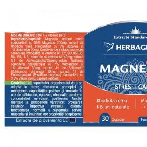 MagneZen Herbagetica 30cps