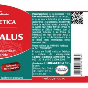 Astragalus Herbagetica 500 mg 60cps